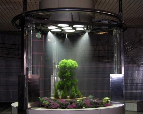Subway Underground Garden