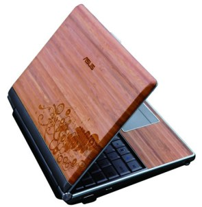 Asus bamboo laptop